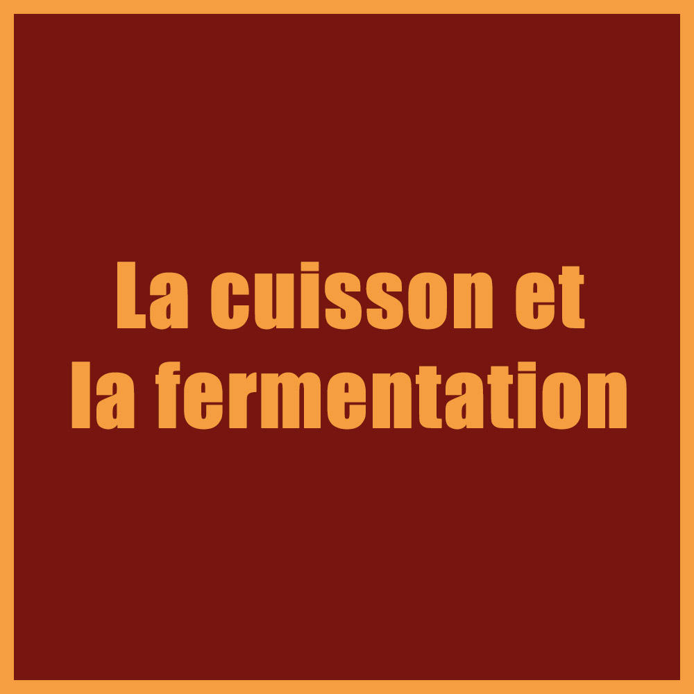 La cuisson et la fermentation